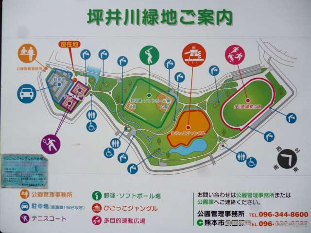 坪井川緑地ご案内