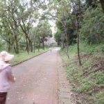 地元の人に人気のウォーキングスポット『弁天山公園』
