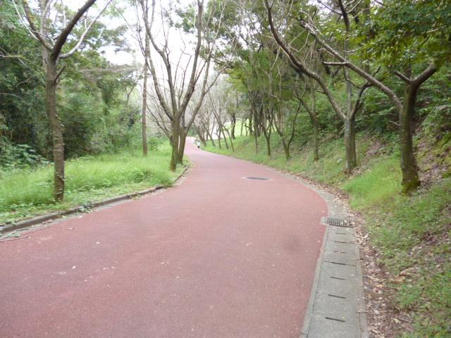 散歩・ランニング コース