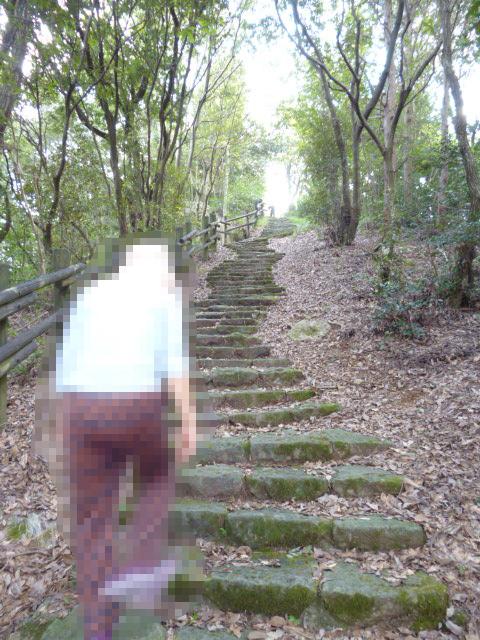 弁天山公園山頂への道