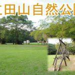 大好きな公園です! 自然に癒されます☆ 『立田山自然公園』