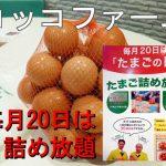 20日はたまごつめ放題&シュークリーム150円→108円『コッコファーム』