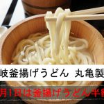 毎月1日は釜揚げうどん半額!『讃岐釜揚げうどん 丸亀製麺』
