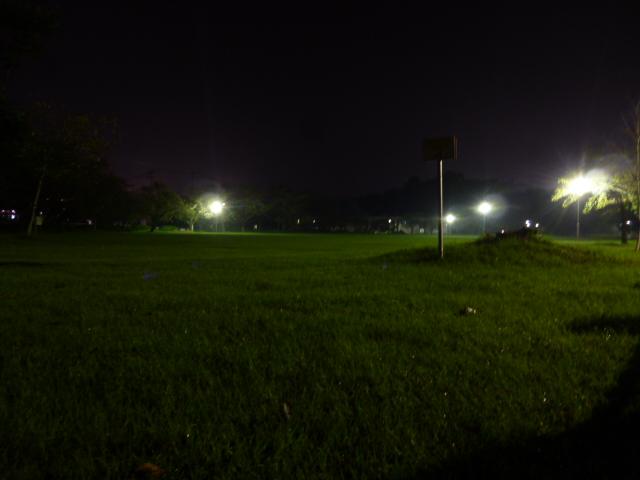 芝生広場 夜