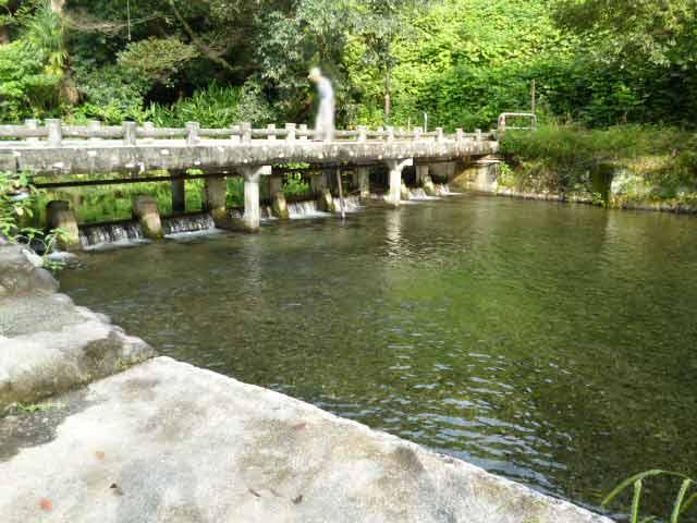 八景水谷公園の水の流れ