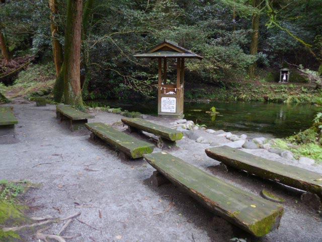 設置された複数のベンチ