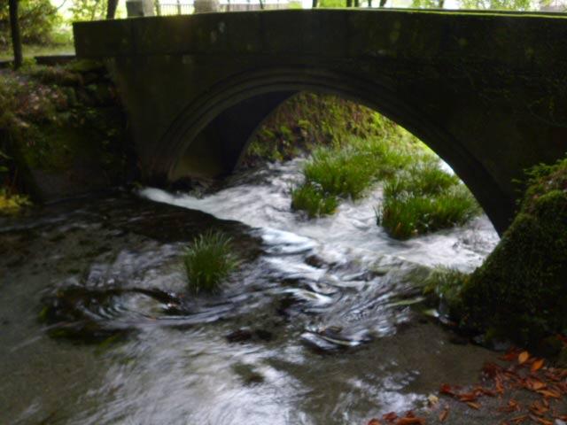 池山水源の写真1