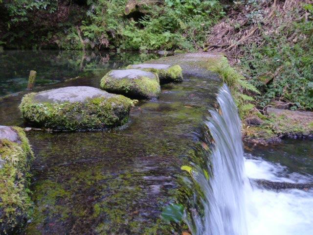 池山水源の写真2