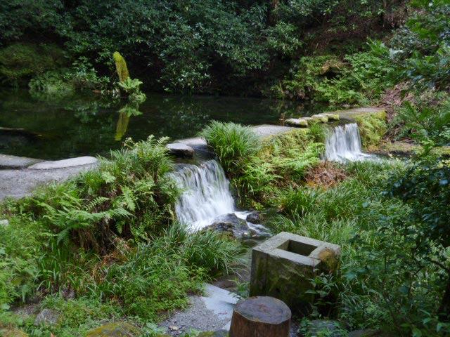 池山水源の写真3