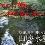 神秘的でもののけ姫の世界のよう☆『山吹水源(やまぶきすいげん)』