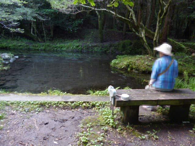 山吹水源写真1