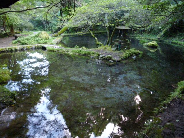 山吹水源写真4