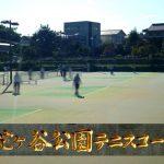 玉名にはいいテニスコートがあるんだ『蛇ケ谷公園テニスコート』