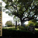 歴史を好きな人におすすめ『田原坂公園』