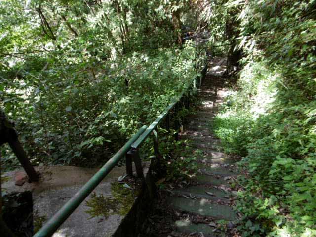 清水滝への道1