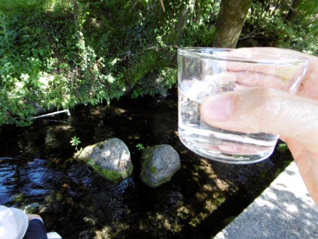 池の川水源2