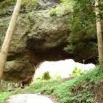 自然のすごいパワーを感じた!!『上色見熊野座神社』