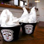 濃厚ソフトクリーム『ミルネー カフェ&ジェラート』