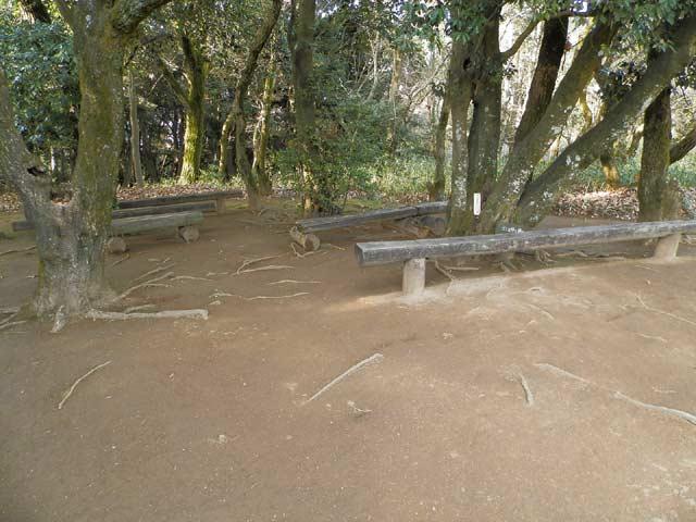 立田山自然公園 ベンチ